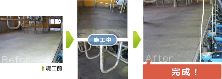 パーラー(搾乳室)レジン 施工前、施工中。完成図